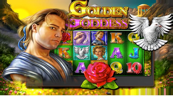 Golden Goddess frocissima